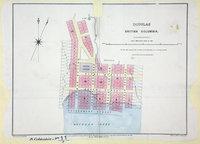 Douglas, British Columbia, 1861.