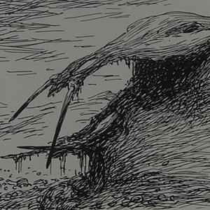 Miðgarðsormr's Skull